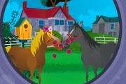 Atların Aşkı