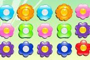 Çiçek Baloncuklar
