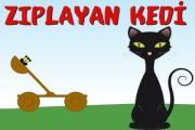 Kedi Zıplatma