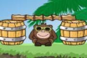 Maymunları Koru