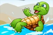 Saver Turtle