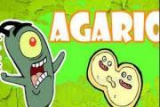 Agariot