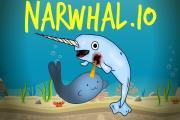 Narwal.io
